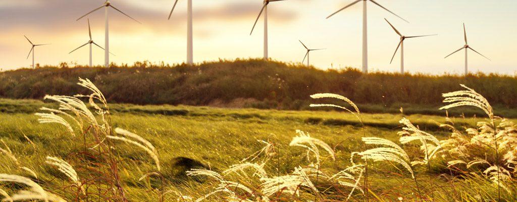 Découvrez Ecocem, un fabriquant de ciment écologique